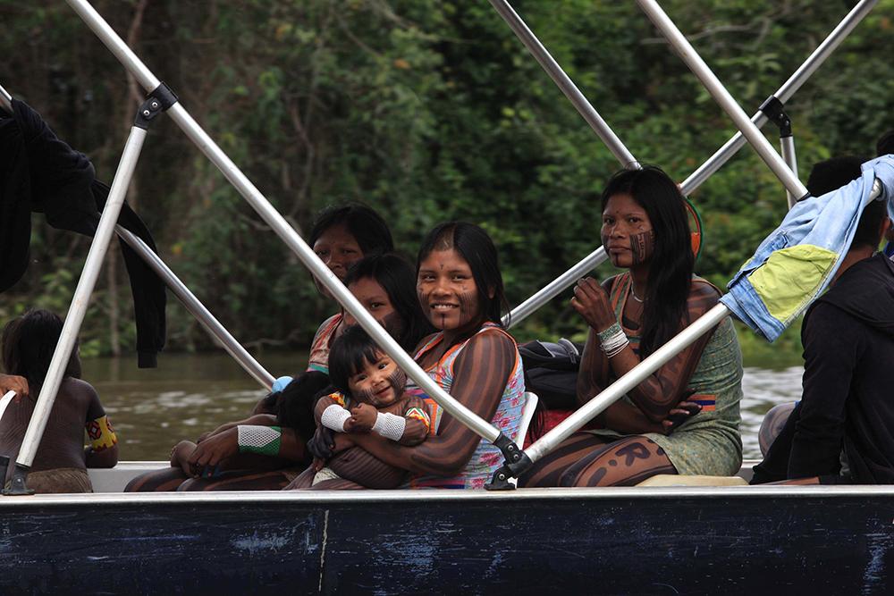 A cada dia, indígenas lidam com invasões de madeireiros em suas áreas.