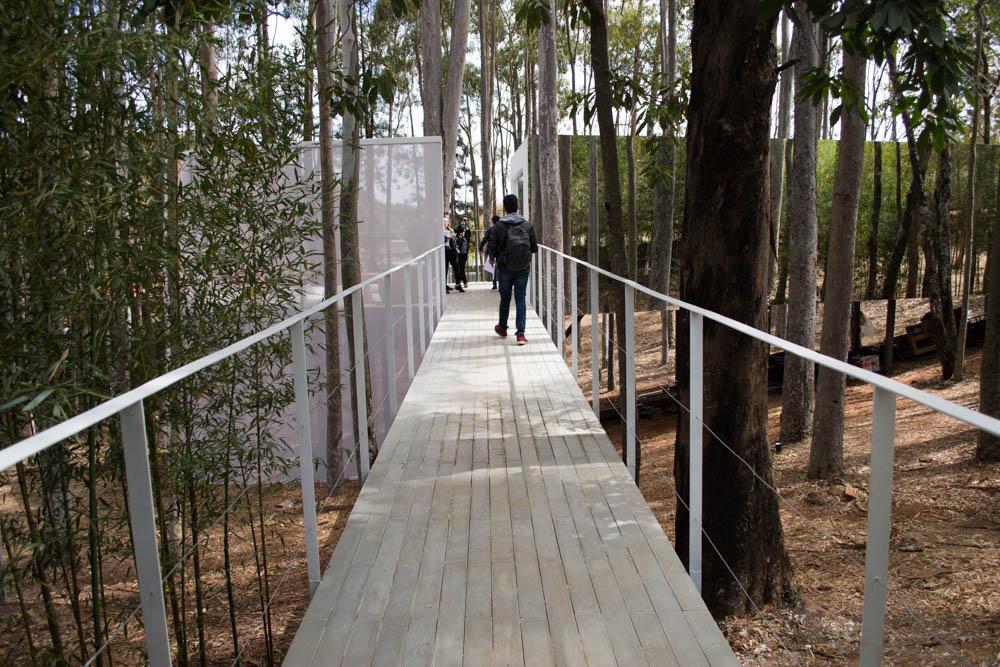 O ambiente Refúgio, de Júnior Piacesi, tem uma das paredes espelhadas, mimetizando a natureza.