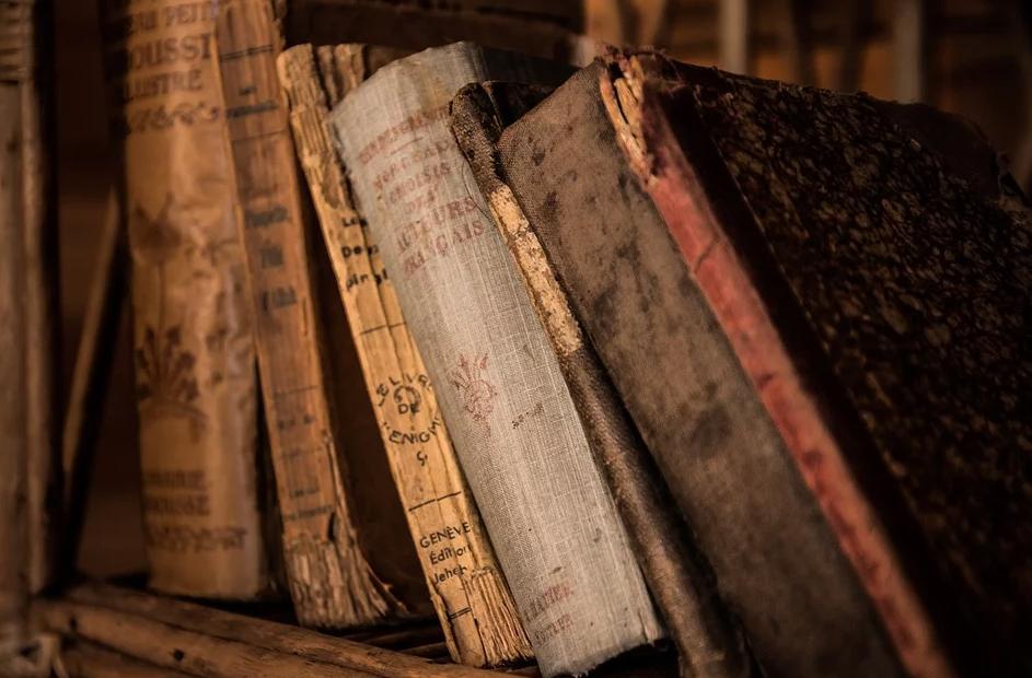 As feiras literárias conseguem trazer-nos de volta um pouco da velha paixão e respeito que merecem esses tão fiéis e adoráveis amigos que são os livros