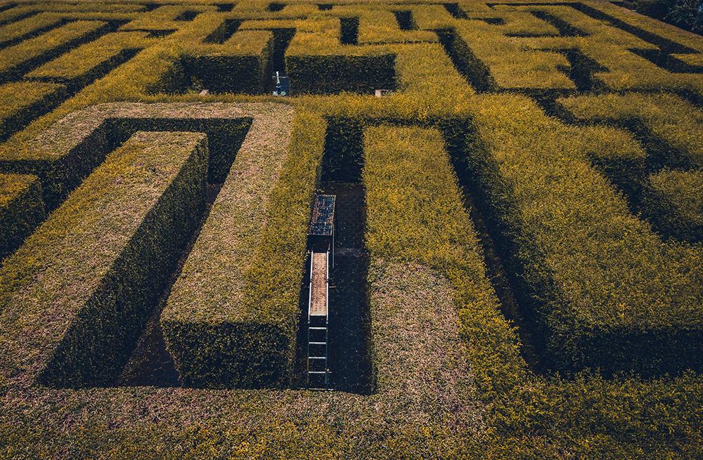 No labirinto se entra e, depois, tudo é surpresa.