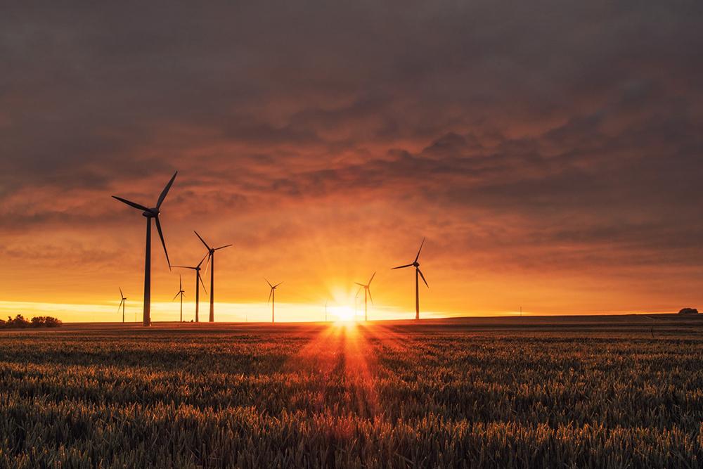 Assim é que precisamos frear as mudanças climáticas, a desertificação do cerrado, por exemplo, superando o sistema capitalista, com a finalidade de preservar a natureza