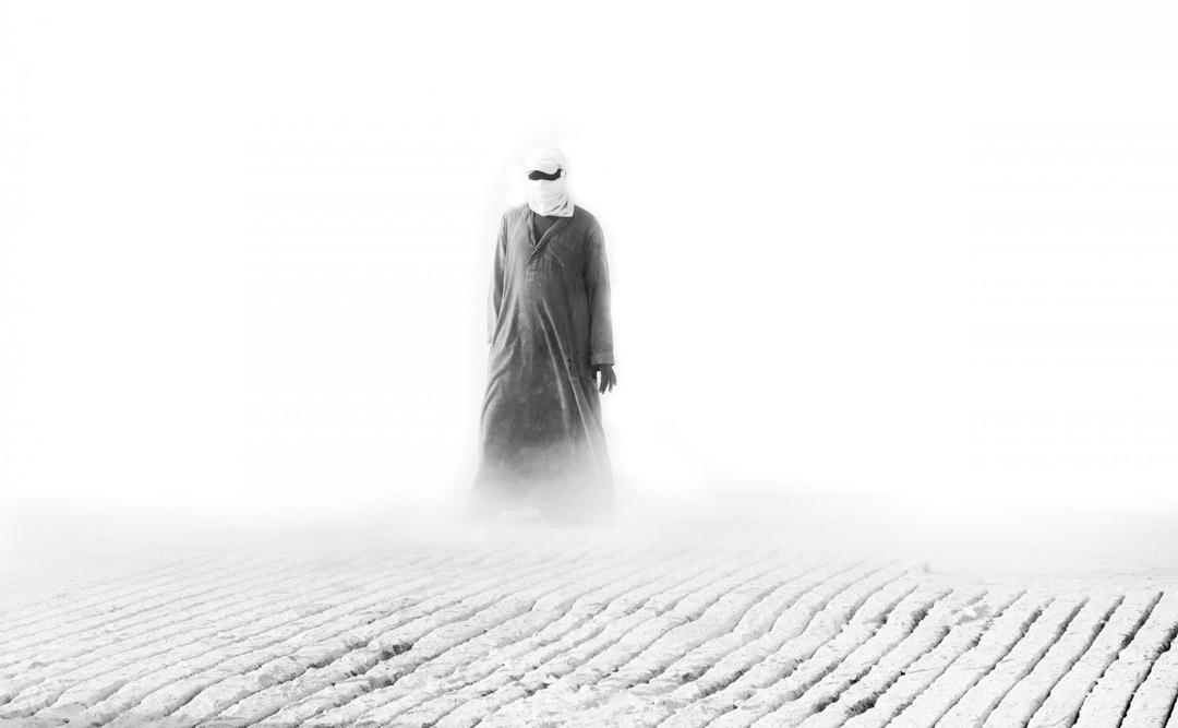 Anas Kamal, Egito