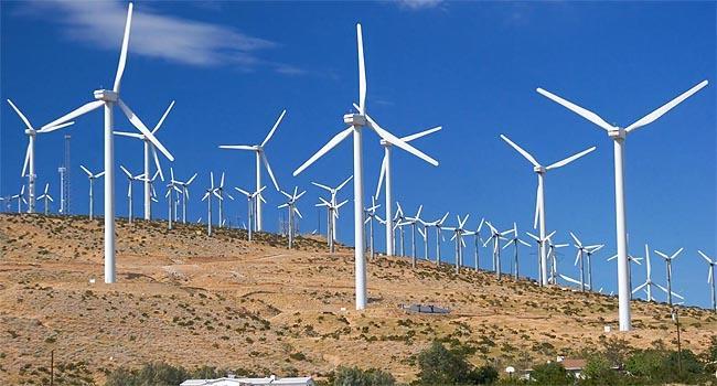 Energia eólica impacta comunidade na Bahia