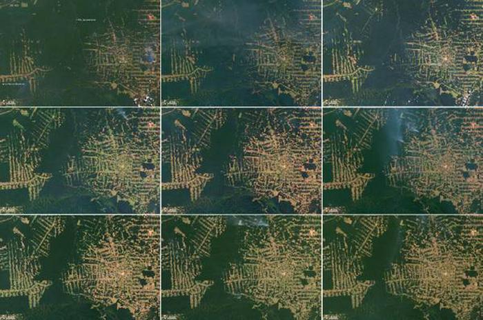 Imagens da NASA mostram desmatamento a partir de 2010