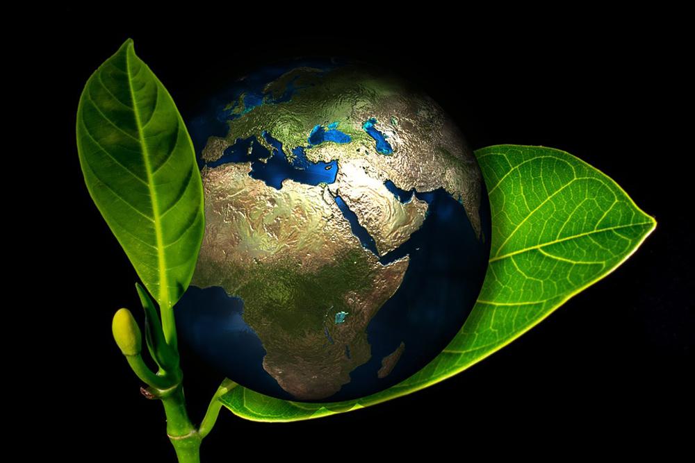 Ativismo judicial no tema do meio ambiente é um traço comum aos dois países.