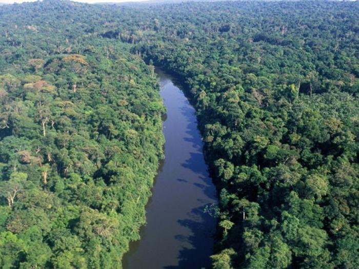 A abertura da área para a exploração mineral aumentará o desmatamento, a perda irreparável da biodiversidade e os impactos negativos contra os povos de toda a região.