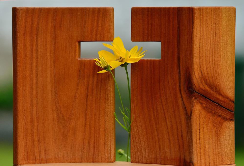 Não é à-toa que o símbolo do amor (não falo do amor açucarado e sentimentalista) é a cruz, onde o esplendor se revela na fraqueza.
