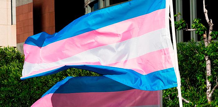 Bandeira do movimento Trans:  interessados em mudar o nome e o sexo não precisarão mais comprovar sua identidade psicossocial.