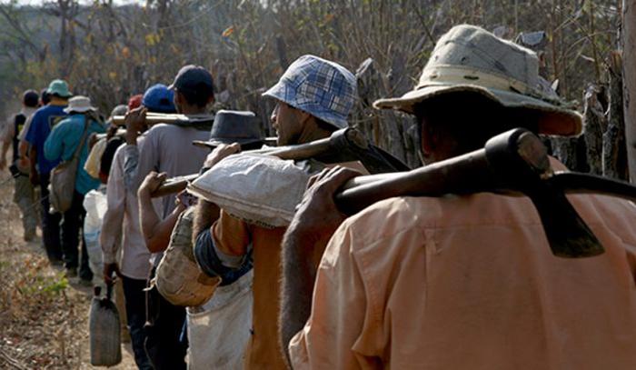 As vítimas não tinham jornada de trabalho estabelecida e não recebiam nenhuma remuneração pelas atividades. Eles trabalhavam em troca de casa e comida.