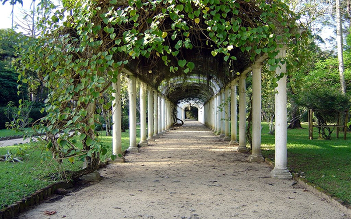 No fim de 2017, o local foi considerado pela Botanic Gardens Conservation International (BGCI) como a instituição botânica com o maior acervo exclusivo do mundo.