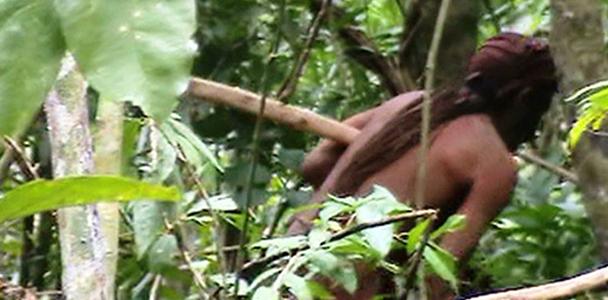 Mais de 800.000 indígenas de 305 etnias e 274 línguas vivem no Brasil, de acordo com dados oficiais.