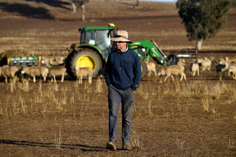 O agricultor australiano Clive Barton caminha por seus terrenos na região de Duri, em Nova Gales do Sul, em 7 de agosto de 2018