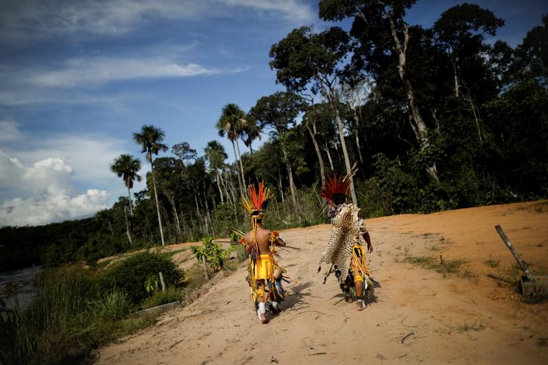 ONU-TERRAS-ATIVISTAS:ONU alerta que ativistas são rotulados de criminosos em disputas de terras
