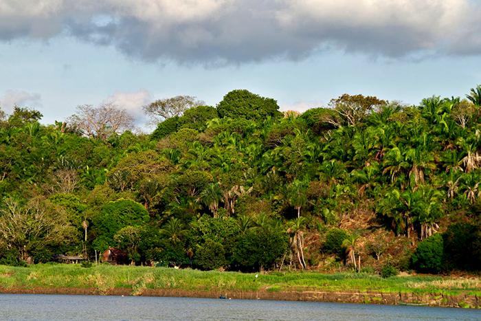 Os dados evidenciam a preocupação maior dos brasileiros com as condições em que vivem, não só nas áreas urbanas.