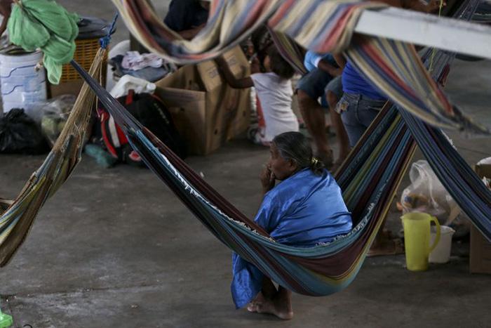 Para a alta comissária adjunta da ONU, é fundamentar assegurar a preservação das liberdades básicas para os indígenas.