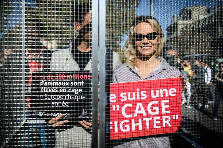 A atriz Pamela Anderson e o bailarino francês Maxime Dereymez durante um protesto contra os maus-tratos aos animais.