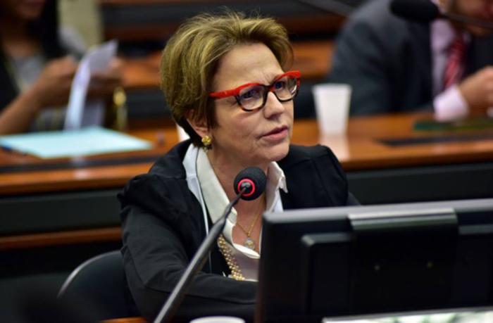Tereza Cristina afirmou que a Secretaria de Pesca e Agricultura Familiar pode ir para a sua pasta.