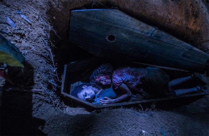 Em uma floresta do interior do Brasil, a vida de uma garota muda ao encontrar o Livro Perdido de Cipriano, cuja magia sombria é capaz de libertar uma maldição sobre a terra.