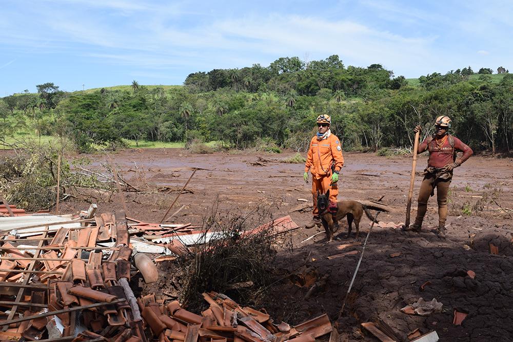 Bombeiros buscam vítimas soterradas com a ajuda de um cão farejador.