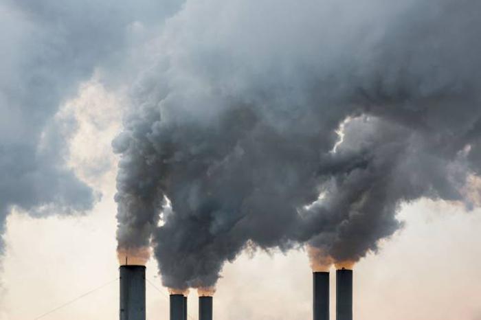 Poluição: pesquisa analisou o cérebro de 998 mulheres entre 73 e 87 anos