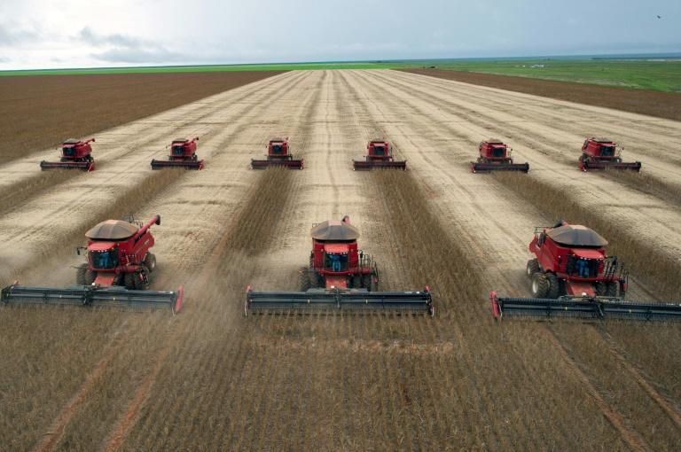 A quantidade de princípios ativos dos agrotóxicos comercializados no Brasil quase dobrou entre 2009 e 2017, chegando a quase 540 mil toneladas.