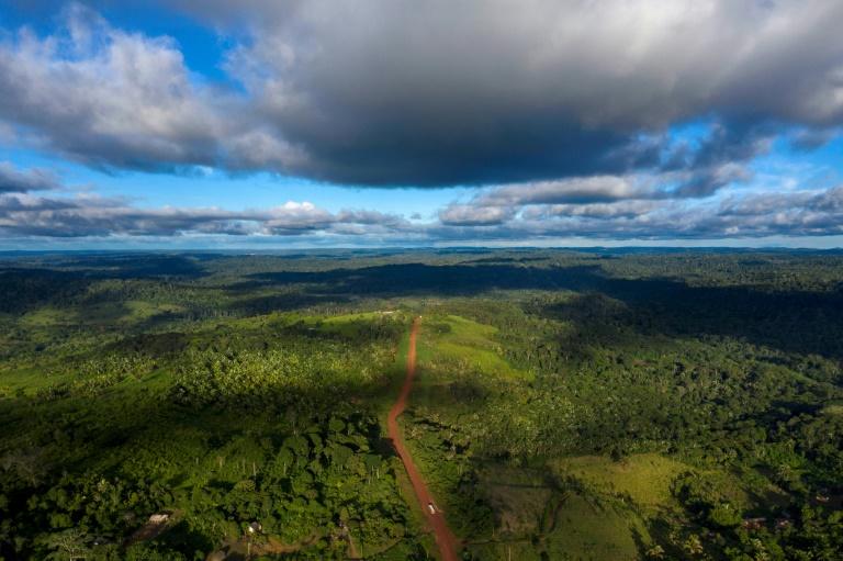 Vista aérea da rodovia Transamazônica perto de Medicilândia, no estado do Pará, em 13 de março de 2019.