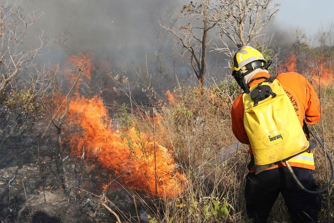 Produtos e serviços necessários ao enfrentamento às queimadas podem ser adquiridos sem licitação