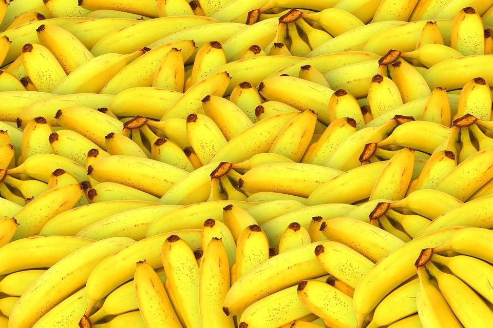 A honraria mais importante, e por isso mais cobiçada, era a Grande Medalha da Banana Dourada.