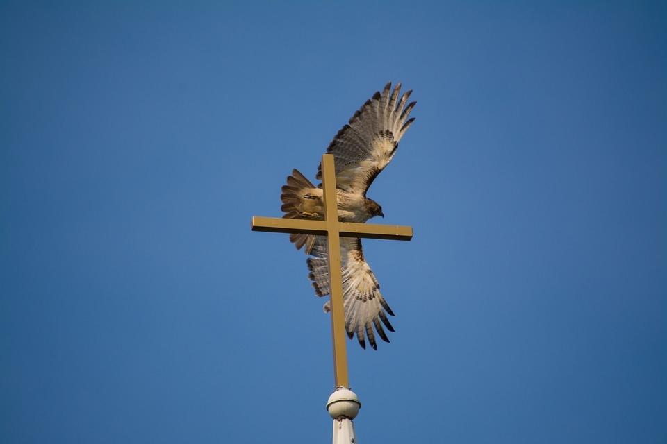 Ó Jesus, permita-nos recordar o Santo Espírito em tudo por vós anunciado!