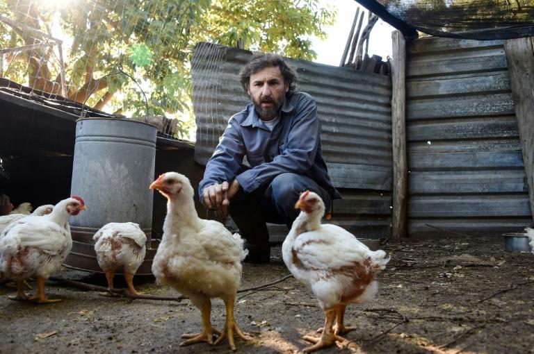 César Vega, engenheiro agrônomo e pré-candidato à presidência do Uruguai pelo Partido Ecologista Radical Intransigente.
