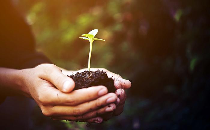 O empresário que emprega a sustentabilidade em sua atuação ganha destaque no mercado.