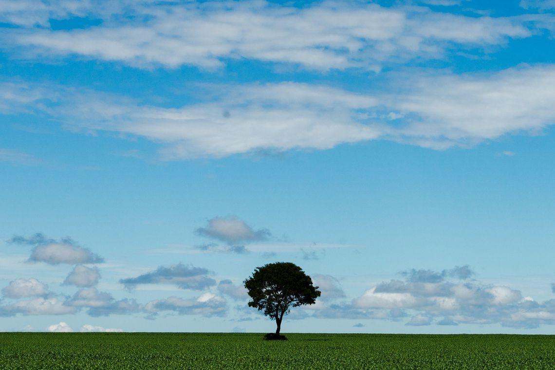 Resultado de imagem para sobre ser nuvem
