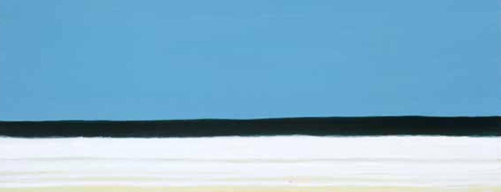 Pintura da série 'Ondas', que brinca com o ritmo do mar