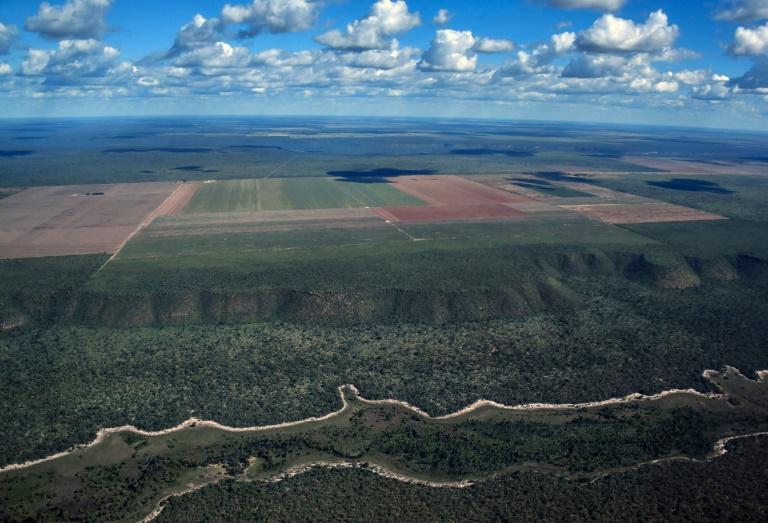 Vista aérea do Cerrado, que rodeia os campos agrícolas em Formosa do Rio Preto, oeste do estado da Bahia.