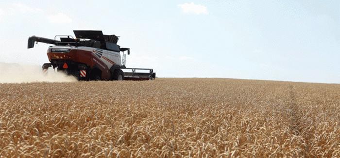 Agronegócio: Setor é ponto sensível do acordo comercial entre Mercosul e União Europeia.