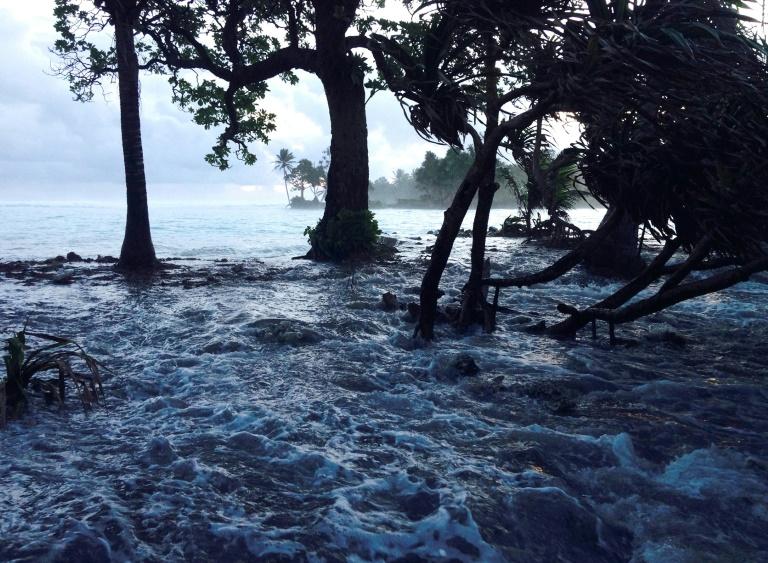 Murray Ford afirma que estas ilhas são mais resistentes do que se pensava até agora.
