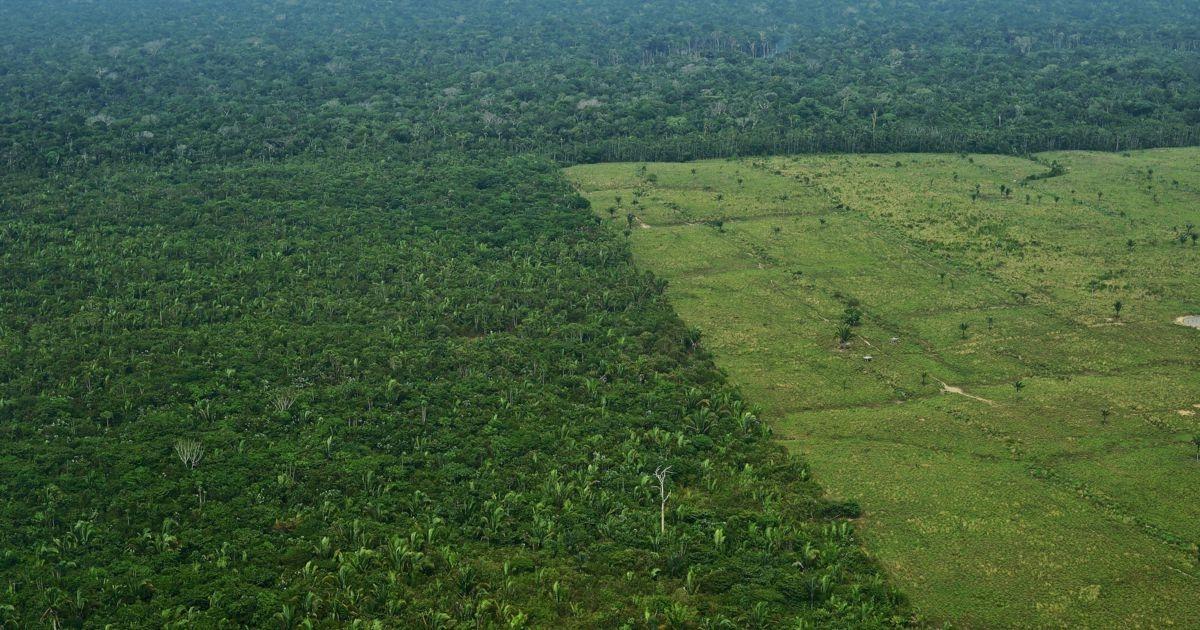 O presidente questionou os dados fornecidos pelo Inpe sobre as taxas de desmatamento da Amazônia e disse que eles são mentirosos.