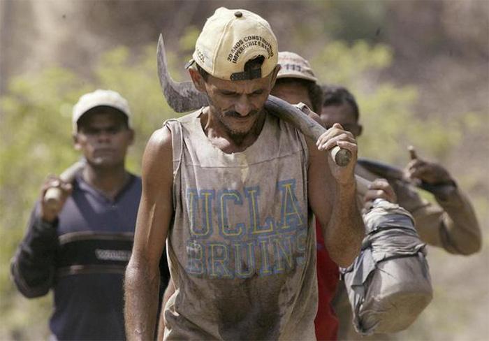 Bolsonaro quer que as regras fiquem mais claras porque, segundo ele, muitos juristas equiparam o trabalho análogo à escravidão ao trabalho escravo.