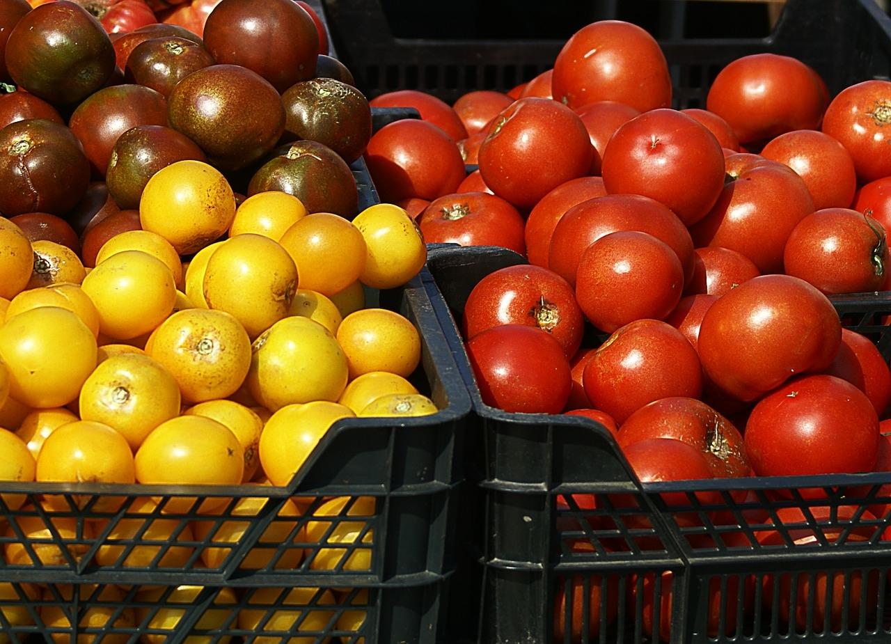 Hoje são 2.263 produtos agrotóxicos no mercado, e um uso anual de mais de 500 mil toneladas, segundo o Ibama.