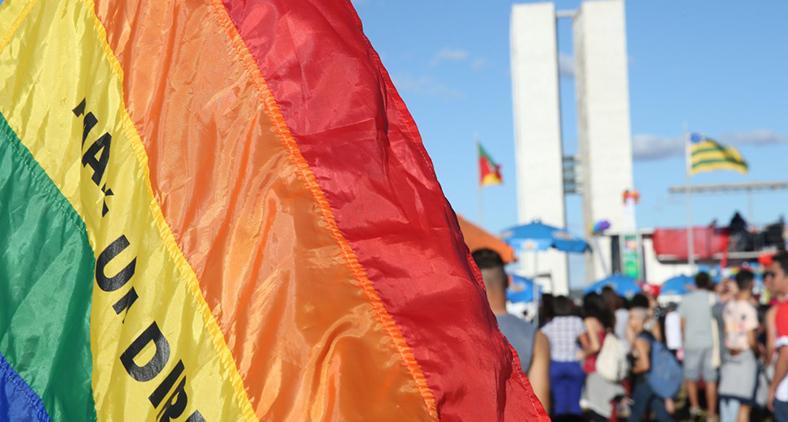 Estava em discussão a 'criminalização da homofobia' através de decisão do Judiciário, e não em razão de lei ordinária federal. (Elza Fiuza/Agência Brasil)