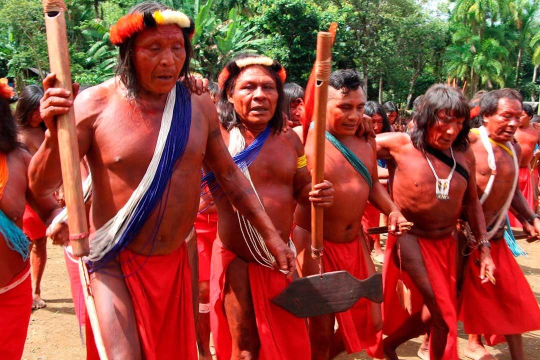 Wajãpi relatam fuga de aldeia após invasão por homens armados.