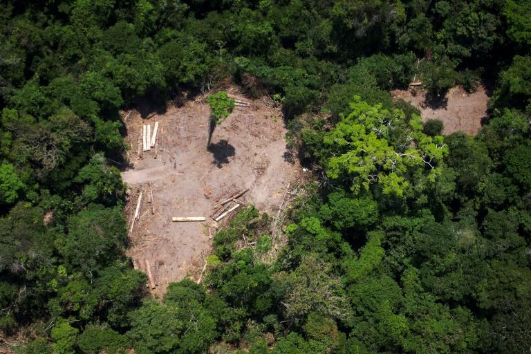 Bolsonaro questiona os dados de desmatamento e bateu de frente com o INPE por causa disso.