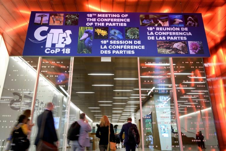 Delegados chegam à Conferência Internacional da Vida Selvagem em Genebra, em 17 de agosto de 2019