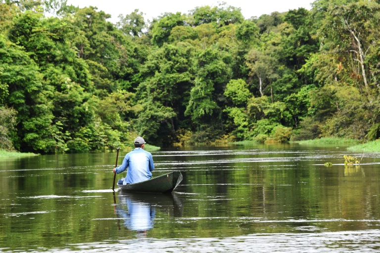 Um pescador procura peixe pirarucu (Arapaima gigas) no rio Jaraua, na Reserva Mamirauá, no Estado do Amazonas, no norte do Brasil.