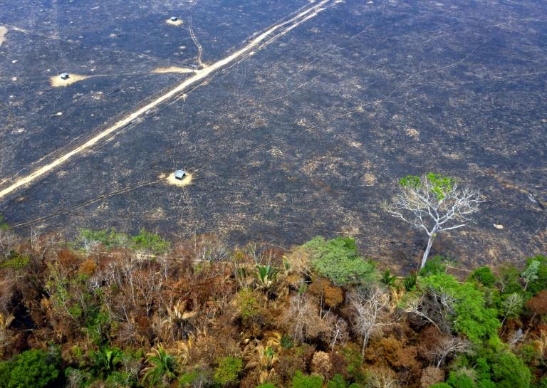 Vista aérea de zona afetada por incêndio em Porto Velho, Rondônia