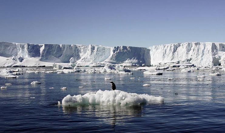 Uma pesquisa feita em 26 países em 2018 mostra que há uma concordância mundial de que as mudanças climáticas são um risco real.