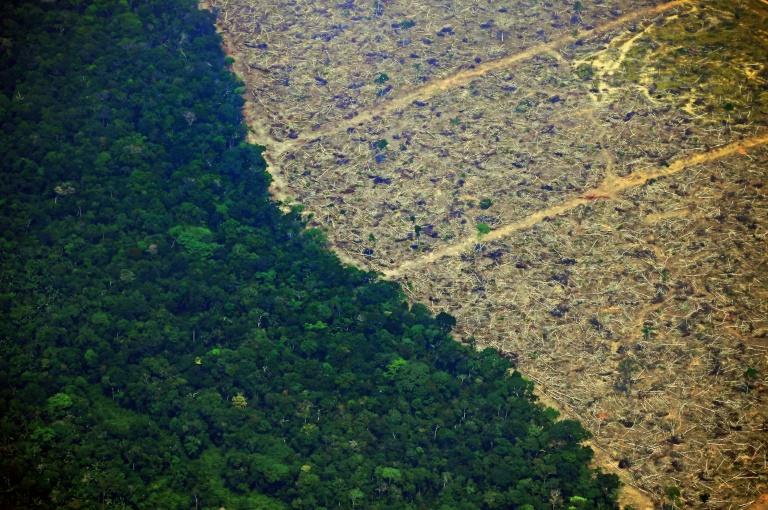 A bacia amazônica sustenta a maior floresta tropical do mundo e desempenha um papel essencial na regulação de climas regionais e até globais