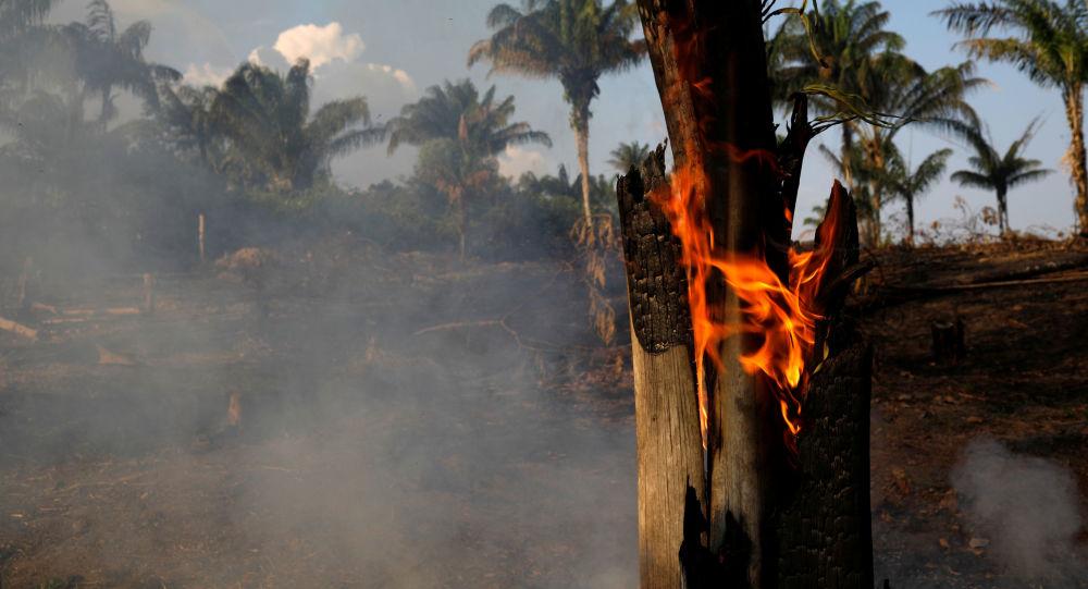 Não é confortável saber que a Amazônia está queimando e deixamos escoar sem tratos o tal