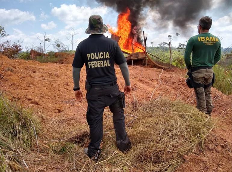 A destruição de produtos e máquinas usados em crimes ambientais é autorizada quando não for possível retirá-los da mata.