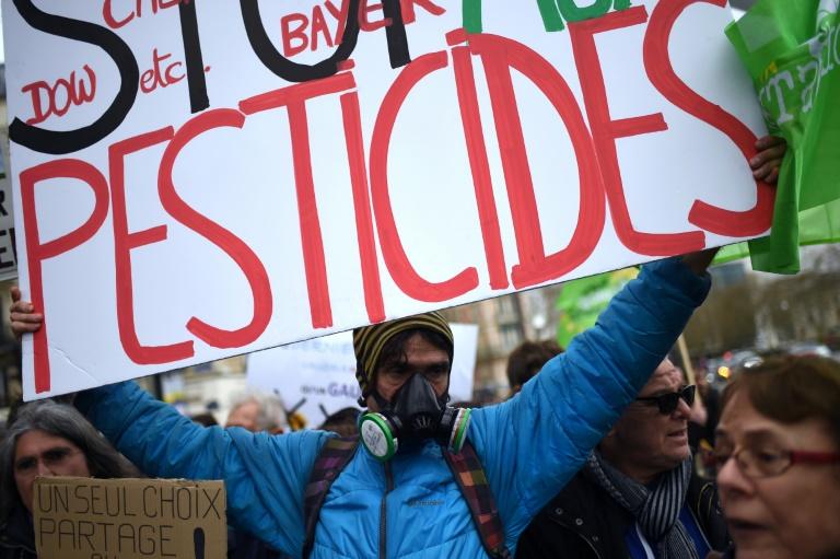 As cinco metrópoles manifestam apoio às dezenas de prefeitos franceses que nas últimas semanas proibiram com decretos o uso de pesticidas.
